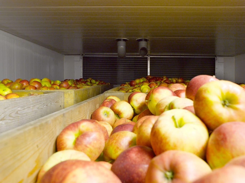 koeltechniek-appels